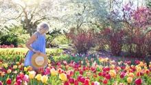 Tavaszi áreső